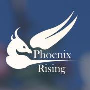 logo-for-phoenix-rising-me-cfs- non-profit