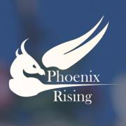 Phoenix Rising has projects on its boards that could contribute substantially to ME/CFS patients.