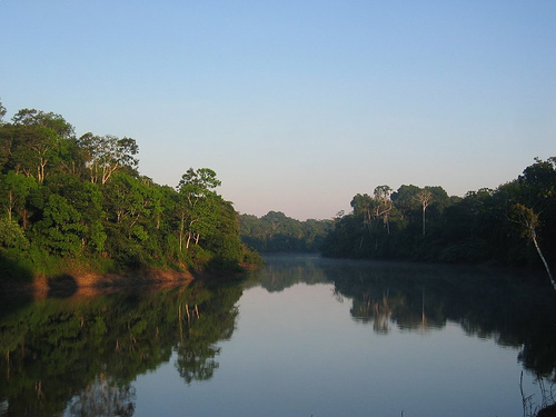 Amazon River by markg6 on Flickr 500
