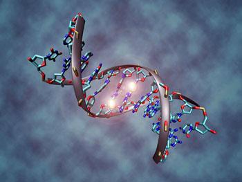 DNA methylation1