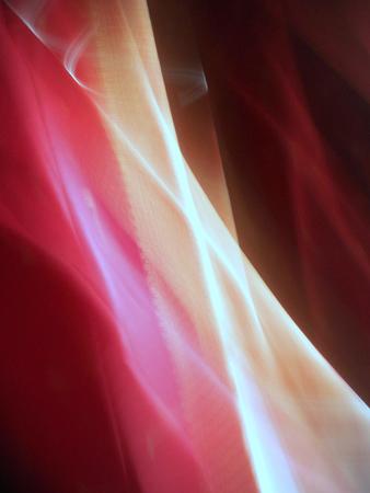 Light's umbilical