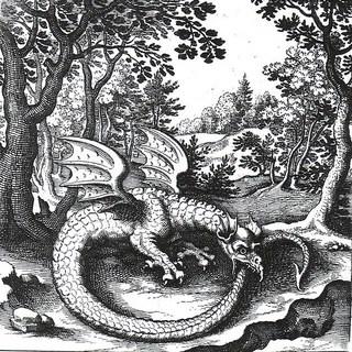 dragon public domain