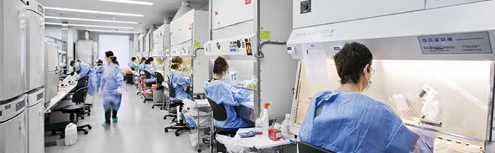 Iriscaixa Lab