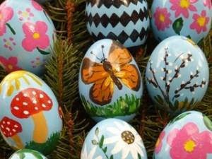 pixabay eggs