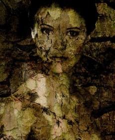 pixabay shadow lady