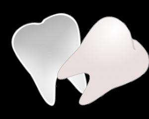 pixabay-teeth