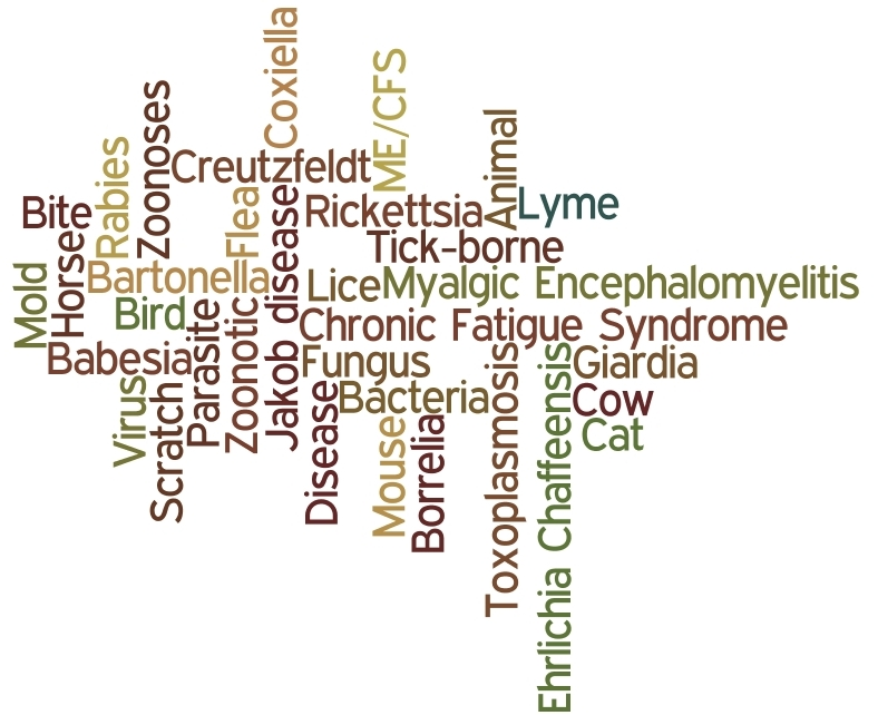 wordle made up of zoonotic words