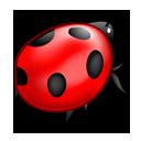 1573-bug..png