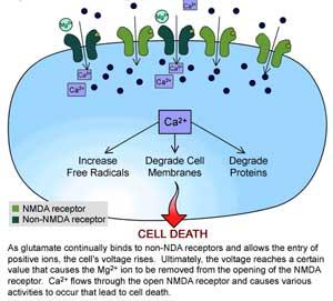 4561 Cellular Receptor