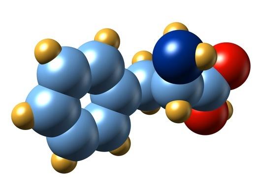 5364-Phenylalanine_Implicated_In_CFS.jpg